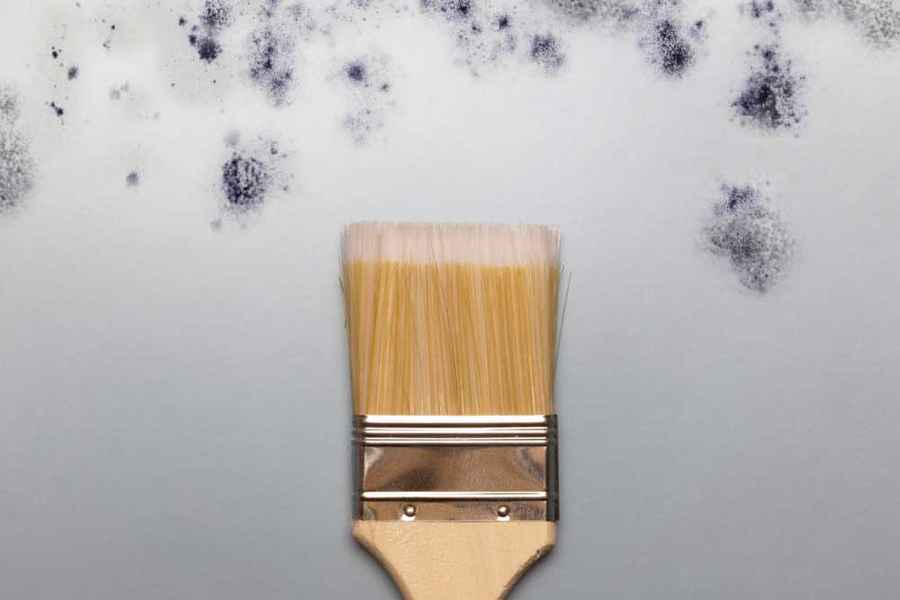 The Complete Guide To Anti Mould Paint